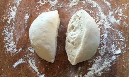 How to Make Basic Pizza Dough – Cold Fermented